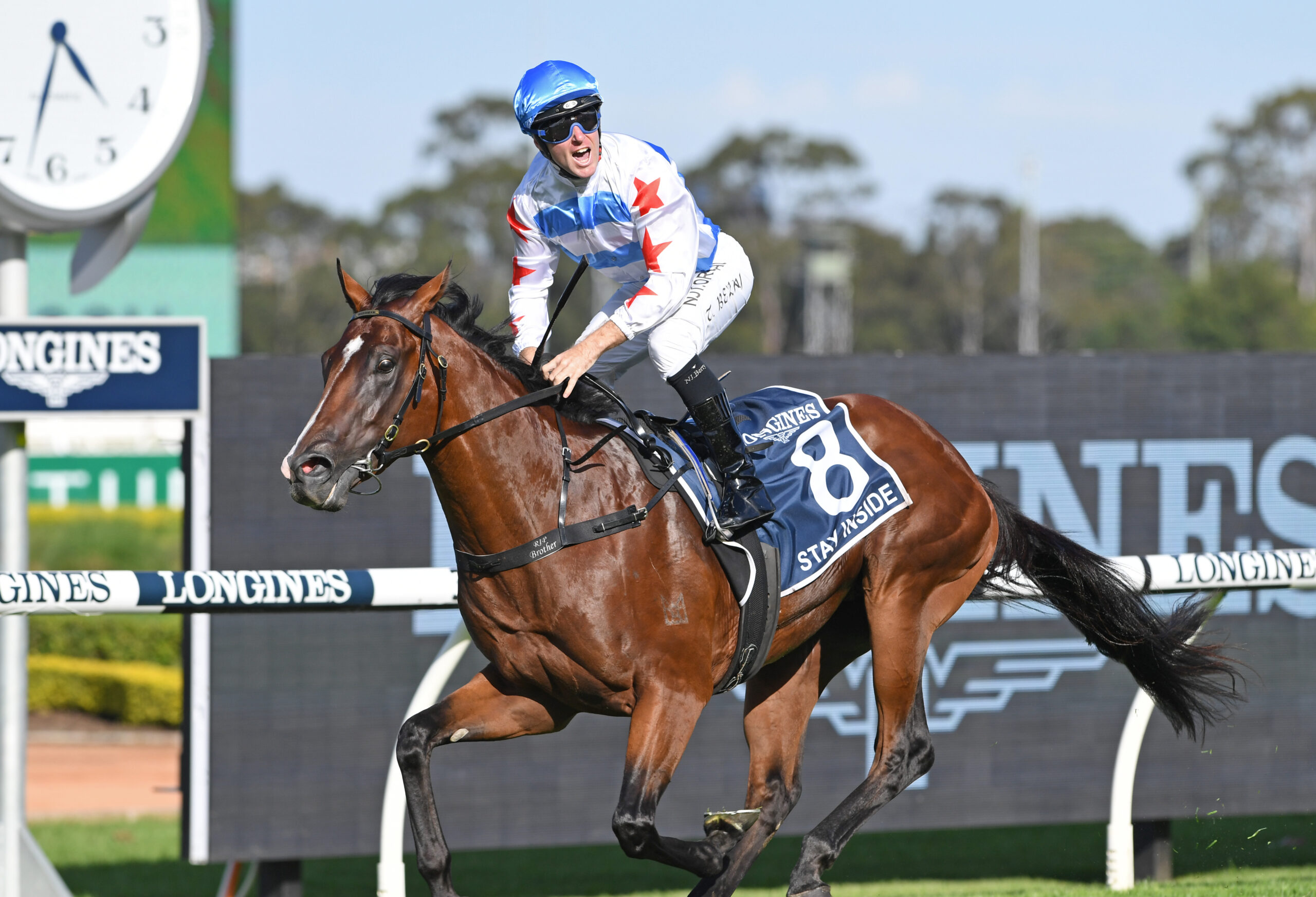 Golden Slipper winner Stay Inside